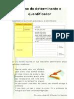 determinante e quantificador_7º (tlebs)