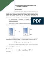 Guio Projecte Caracteritzacio Experimental Columnes Bambolleig 12-13