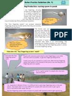 09_Fast Fingerling Production-nursing Spawn in Ponds