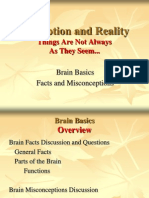Brain Basics S