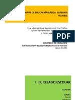 PROGRAMA NACIONAL DE EDUCACIÓN BÁSICA SUPERIOR FLEXIBLE