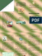 Triptico de Desastres Ecologicos