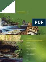 Desmatamento e Mudancas Climauticas