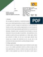 Informe de Laboratorio Galvanizacion