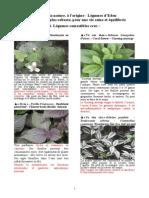 Legumes d'Eden.pdf
