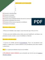Princípios Do Direito Processual Do Trabalho e Organização Da Justiça Do Trabalho