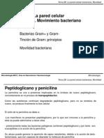 Tema 2B (La pared celular y movimiento).pdf