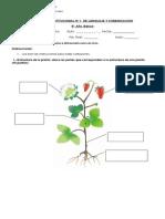 5  richard basico institucional ciencias naturales  D.doc