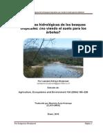 3. Hydrology S. Bruijnzeel
