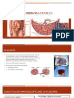 Placenta y Membranas Fetales-Mantilla Ibañez.