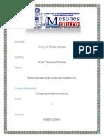 Protocolos Del Modelo Osi.