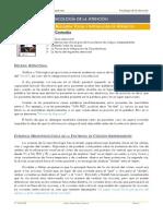 Psicologc3ada de La Atencic3b3n Tema 4