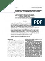 Artikel Eksperimen IMT Pada TBC-Karnel