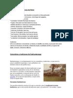 Costumbres y tradiciones de Peten.docx