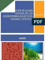 Proliferación de Algas Tóxicas en Los Ecosistemas Acuáticos