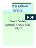 Cultivo Hidroponico de Hortalicas