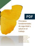 Principios Fundamentales de Seguridad y Salud en El Trabajo