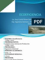 Ecoeficiencia 35