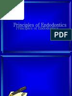 Principles of Endodontics