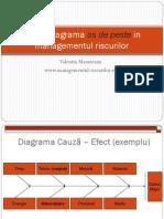 Diagrama Cauza - Efect