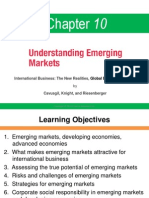 IB Chapter 10 Understanding Emerging Markets (1)