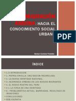 Migración Andina