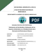 II Practica Preprofecional (Victor Manuel, Beteta Alvarado)