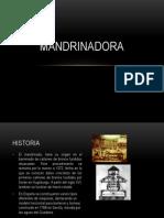 168769296-MandrinAdora