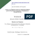 Análisis de Los Impactos Sobre Los Componentes Bióticos Por Los Proyectos de Generacion y Transmision de Energia Electrica TESIS