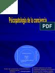 Psicopatologia de La Conc. y Atenc.