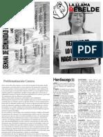 Llama Rebelde is back!.pdf