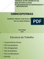 Apresentação Gmnospermas