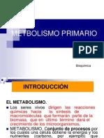 8.- METABOLISMO PRIMARIO