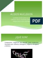 ÁCIDOS NUCLEICOS 1