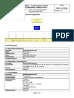Ejemplo de descripción y perfil de puesto.pdf