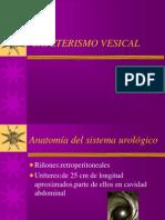 Cateterismo Vesical Ramiro