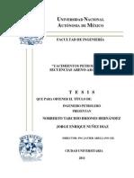 Tesis1 - UNAM