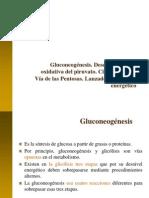 Gluconeogénesis, CK, VP, Lanzaderas (1)