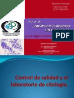 control-calidad bogota colombia.pdf