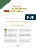 AR08-David 2008 budgeting.pdf