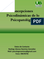 Concepciones Psicopatológico - Copia (8)