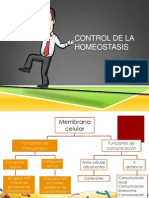 Clase Post Actividad Homeostasis