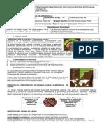 0. Generalidades y Fisiologia Del Cacao