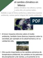Efectos Del Cambio Climático en México