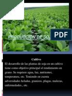 Produccion de Soja