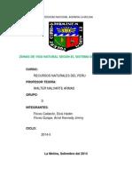 Zonas de Vida-grupo D.pdf