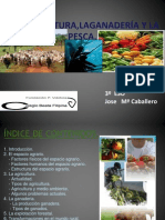 laagriculturalaganaderaylapesca-120206072318-phpapp02