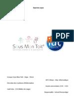 LP RT IE_rapport stage_Baptiste Lopez_version finale_censuree_avec signets.pdf