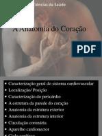 A Anatomi..[1].pptx