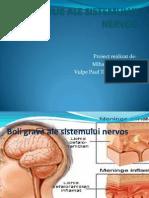 Boli Ale Sistemului Nervos